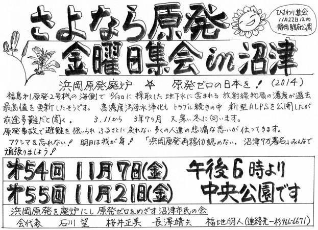 さよなら原発金曜日集会in沼津2014年11月